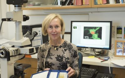 Hope Center Scientists Developing Better Pain Treatment